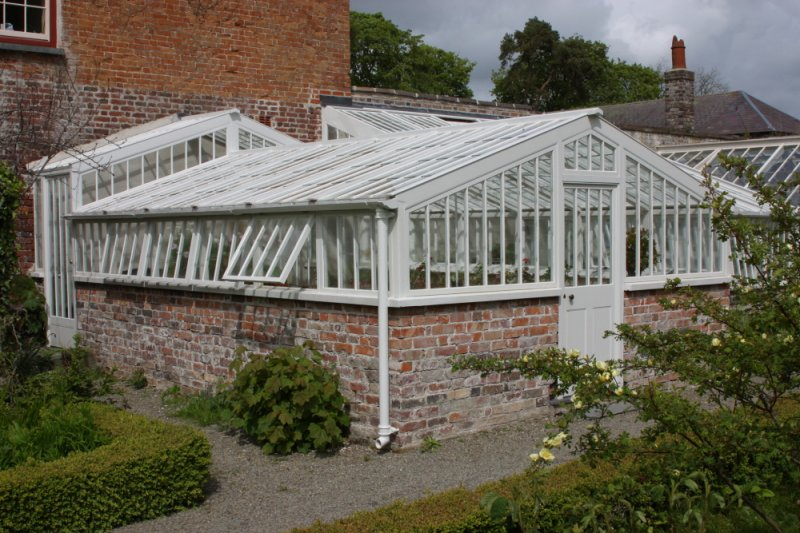 LlanerchaeronGreenhouse5